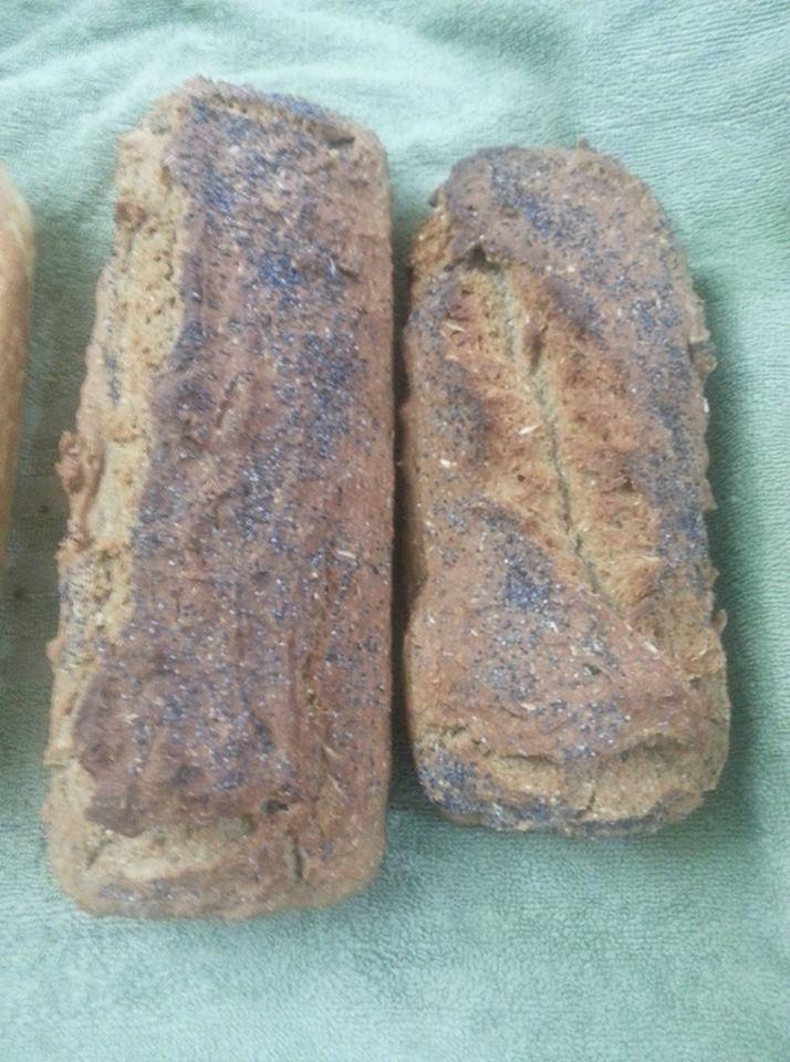 ψωμί με αλεύρι ζέας 10