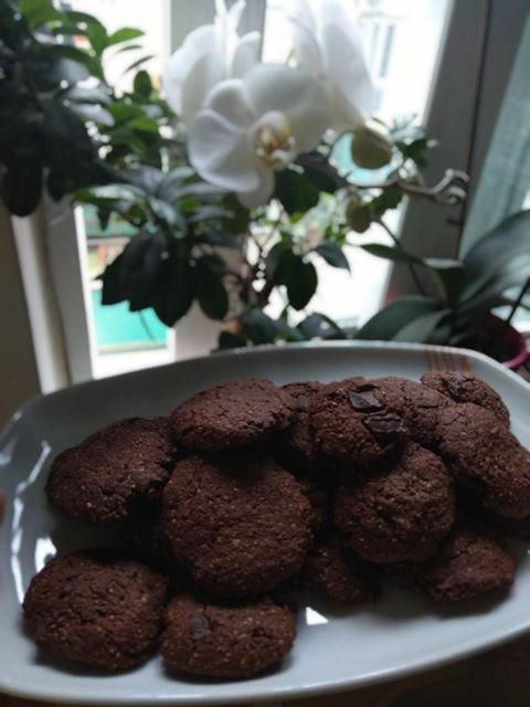 μπισκότα με βρώμη και κακάο