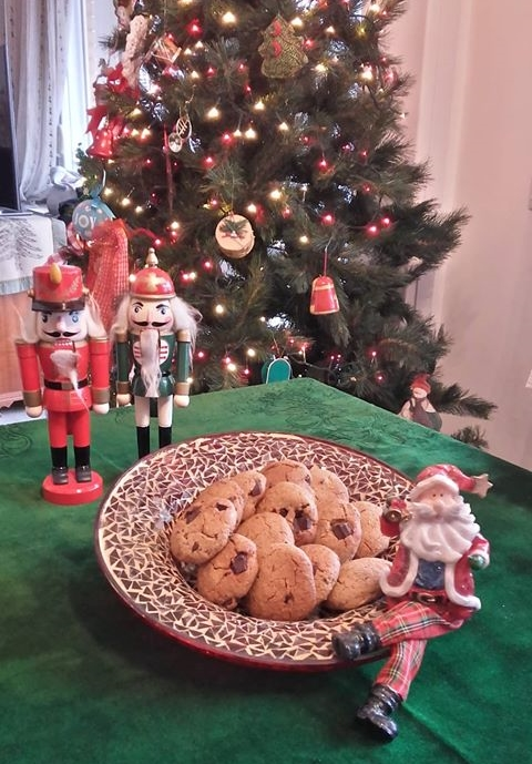 μπισκότα πορτοκαλιού με βρώμη και σταγόνες σοκολάτας